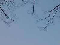 DSC_0752.jpg
