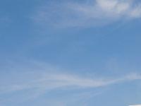 DSC_0774.jpg