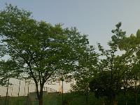 DSC_1062.jpg
