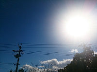 DSC_2370.jpg
