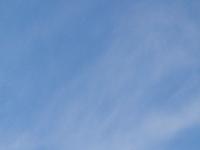 DSC_2384.jpg