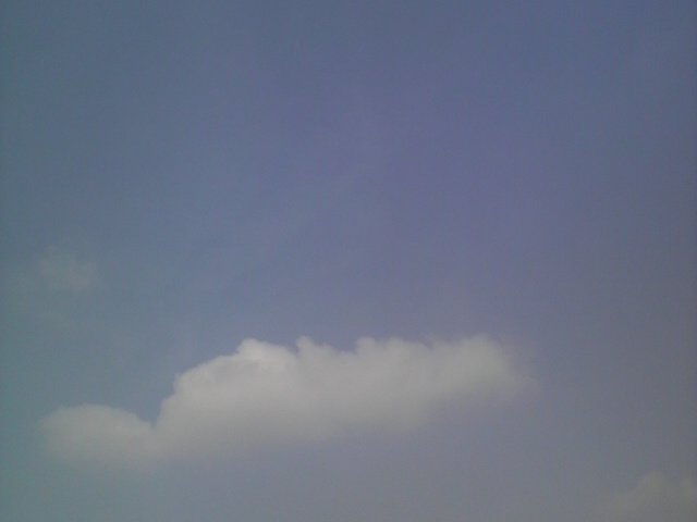 今日の空とグレイさん